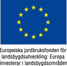 Eu flagga europeiska jordbruksfonden f rg